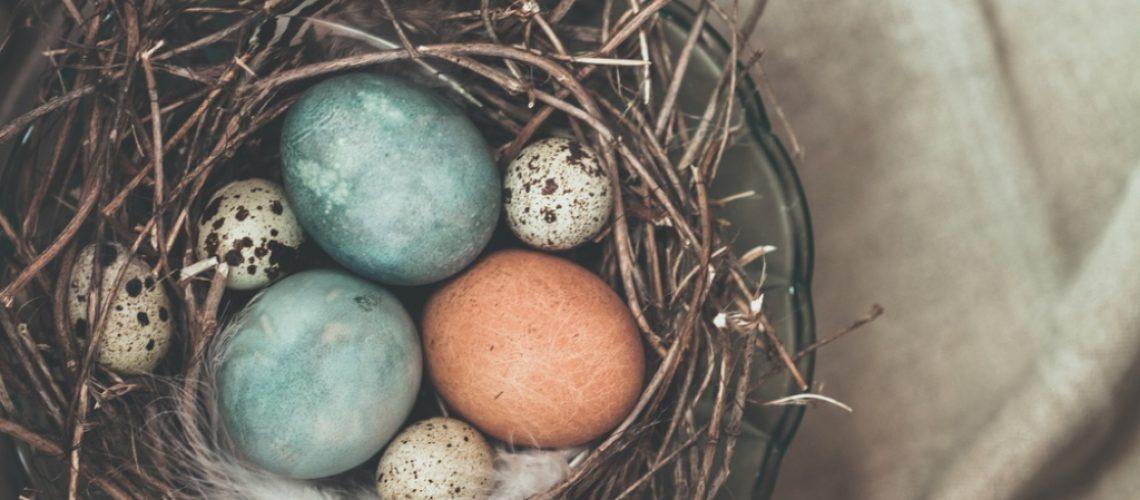 Inspirujte se, jaká malovaná vajíčka letos nabídnout koledníkům na Velikonoce!